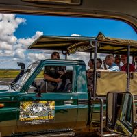 hluhluwe game reserve half day safari