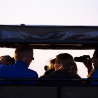 isimangaliso half day safari tour