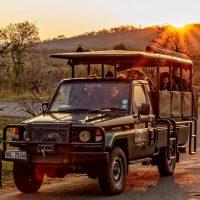 hluhluwe umfolozi full day safari