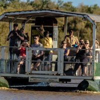 st lucia isimangaliso wetland park safari tours
