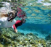 snorkeling 3